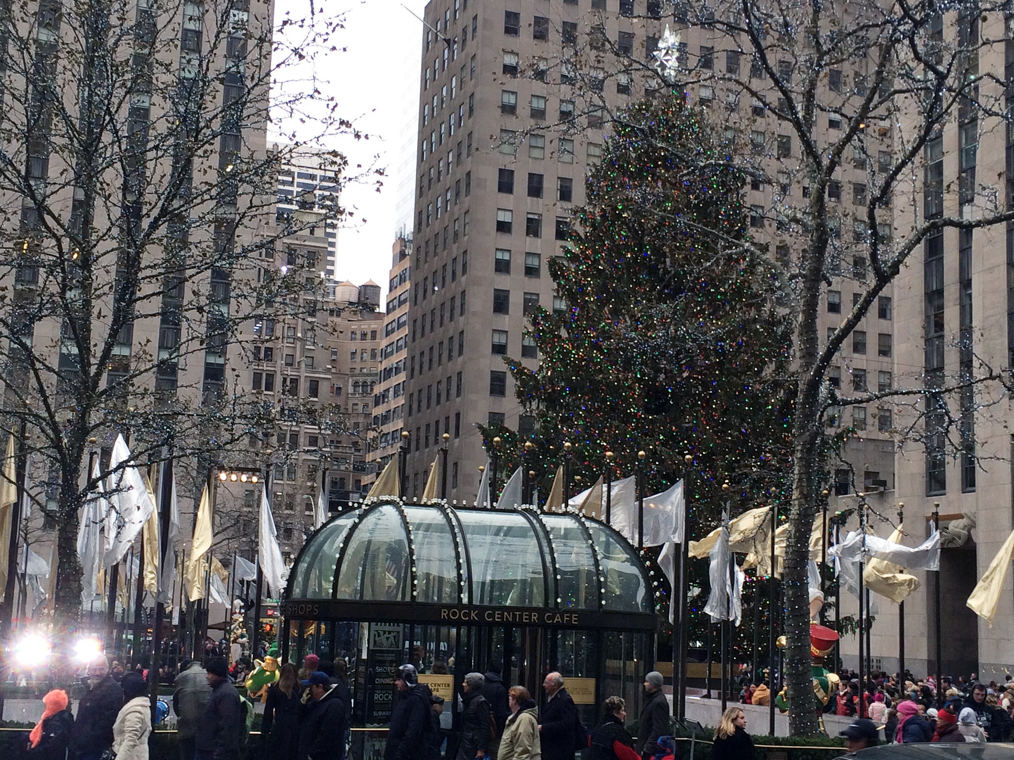 Rockefeller Tree in New York