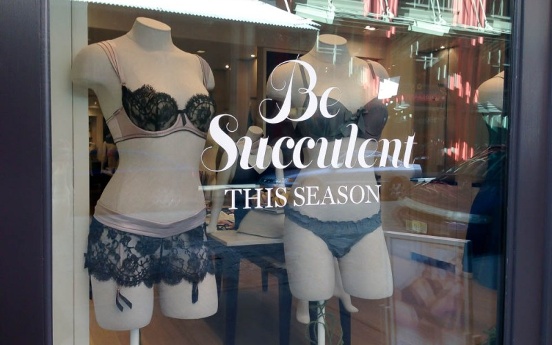 Lingerie display at Journelle in New York. Photo by alphacityguides.