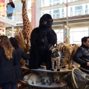 New York Zoo giant stuffed toys at FAO Schwarz in New York. Photo by alphacityguides.