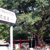 Flower market sign in Hong Kong. Photo by alphacityguides.