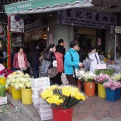 People shopping at the Flower Market in Hong Kong. Photo by alphacityguides.
