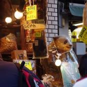 Vendor at Tsukiji Market in Tokyo. Photo by alphacityguides.