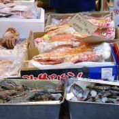 Fish stall at Tsukiji Market in Tokyo. Photo by alphacityguides.