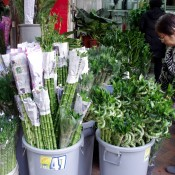 Bamboo at the Flower Market in Hong Kong. Photo by alphacityguides.