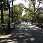 Washington Square Park in New York. Photo by alphacityguides.